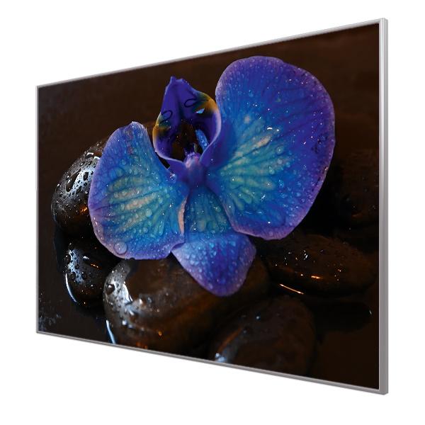 Bildheizung Motiv 004 Orchidee