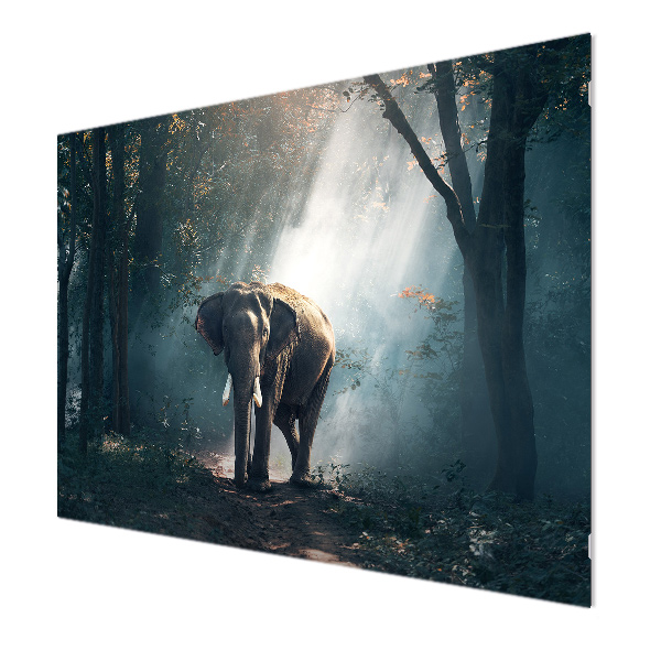 Glasbildheizung Motiv 021 Elefant