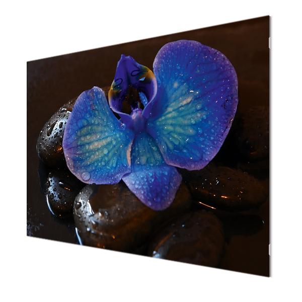 Glasbildheizung Motiv 004 Orchidee