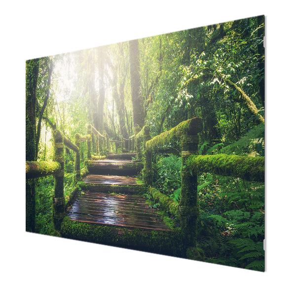Glasbildheizung Motiv 019 Dschungel