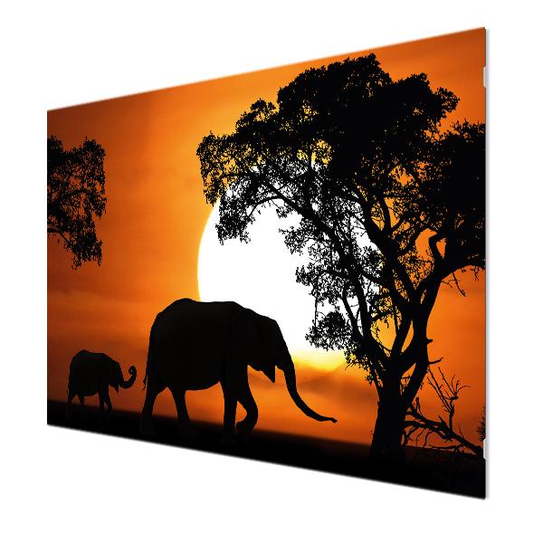 Glasbildheizung Motiv 011 Elefanten