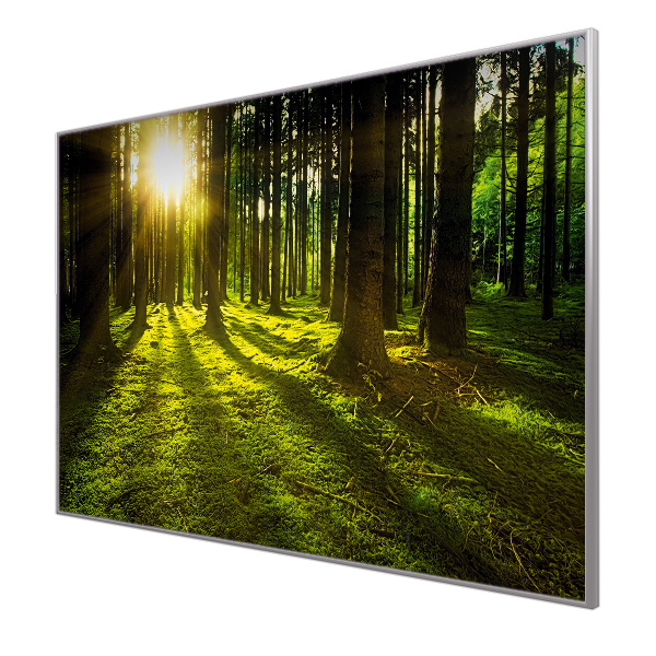 Bildheizung Motiv 020 Wald